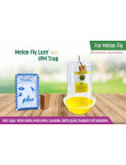 IPM trap with Melon fly lure