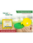 Funnel trap with YSB-lure