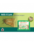 Funnel trap with Helic-O-lure