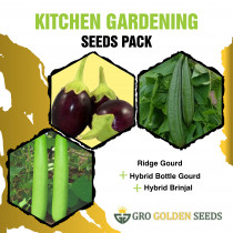 Ridge Gourd, Bottle Gourd and Brinjal Seed (Combo Pack)