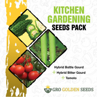 Bottle Gourd, Tomato and Bitter Gourd Seed (Combo Pack)