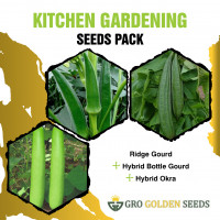 Ridge Gourd, Bottle Gourd and Okra Seed (Combo Pack)