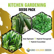 Spinach, Coriander and Tomato Seed (Combo Pack)