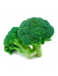 Brocolli Green Sprouting
