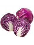 Red cabbage Red Ball